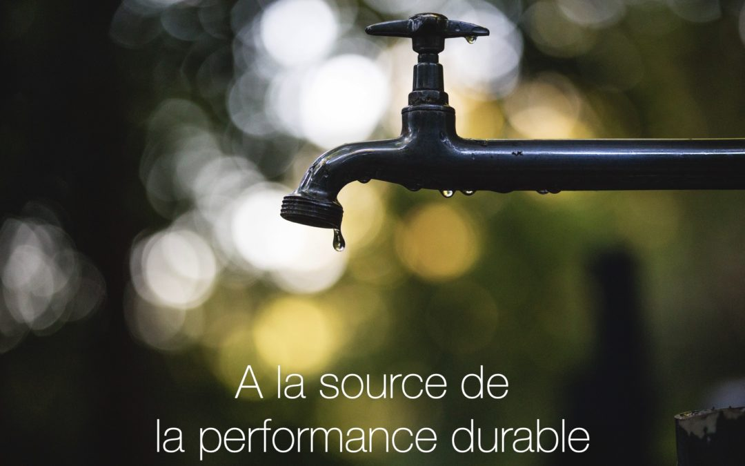 A la source de la performance durable : sécurité psychologique, bienveillance et intelligence collective